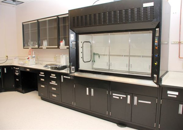 RDM LAB FUME HOODS & CASEWORK - BLACK FINISH