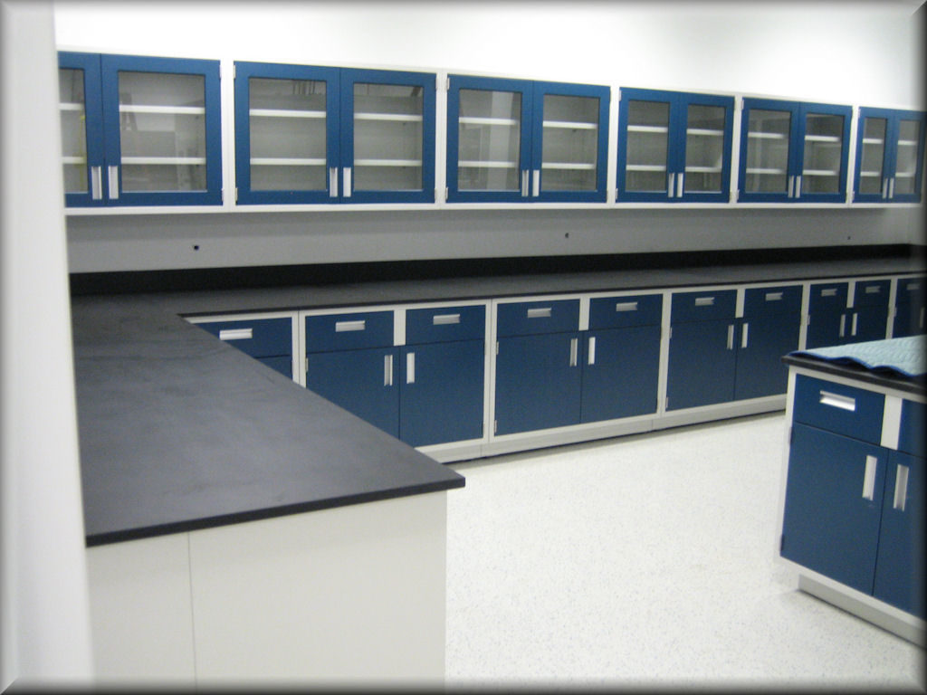 Metal Laboratory Cabinets / Laboratory Casework & Countertops