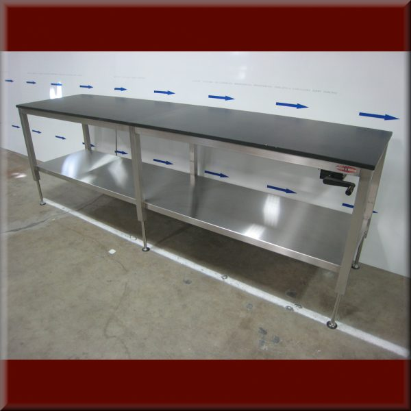 Stainless Steel Ergonomic Lift Table A-107P-SS-CLG-TRESP